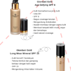 6 Jenis Foundation Oriflame